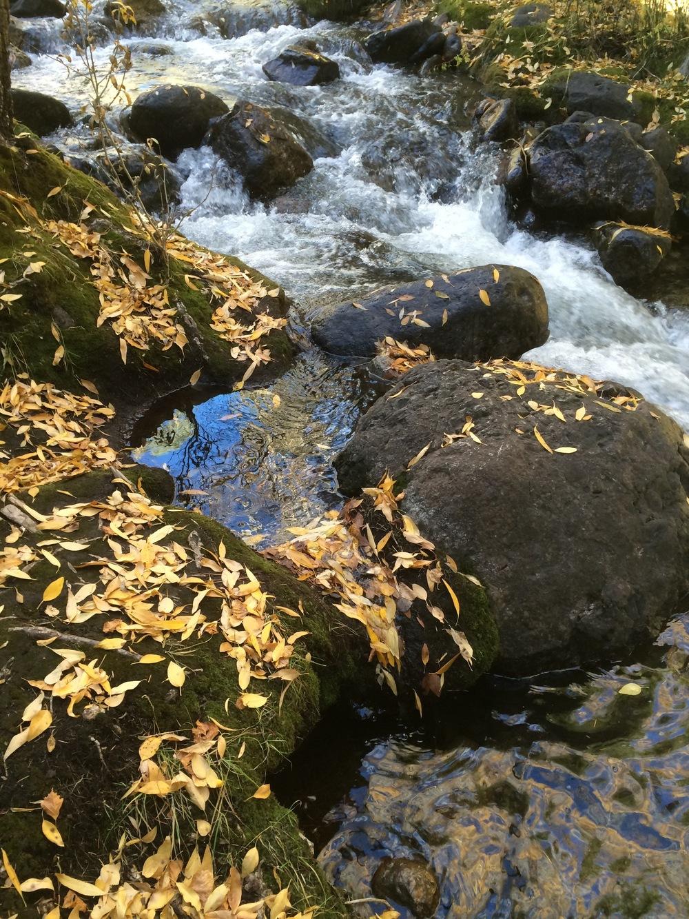10-24-14 n. crestone creek landscape.jpg