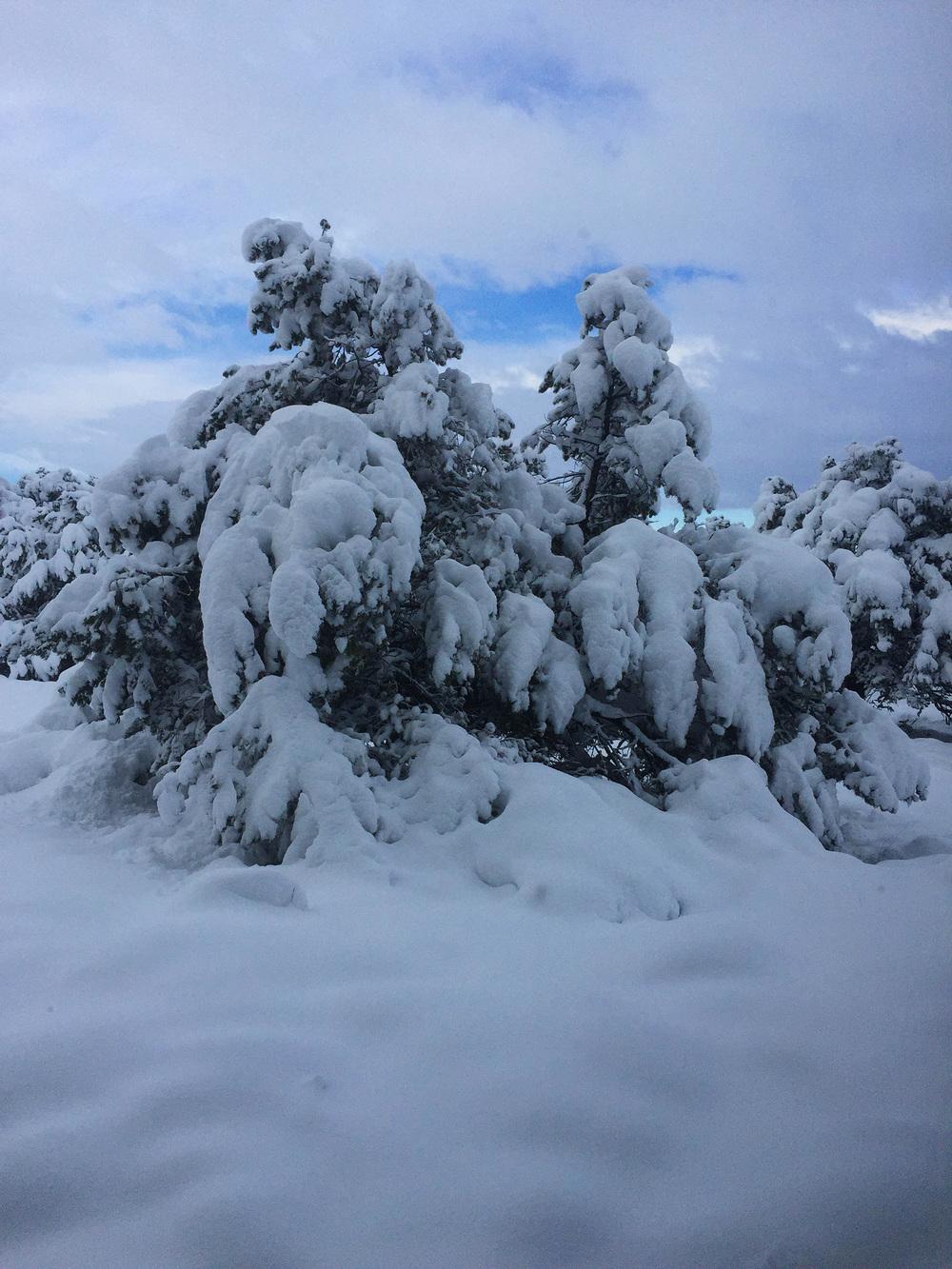 site-5-9-15Big Snow 15.jpg