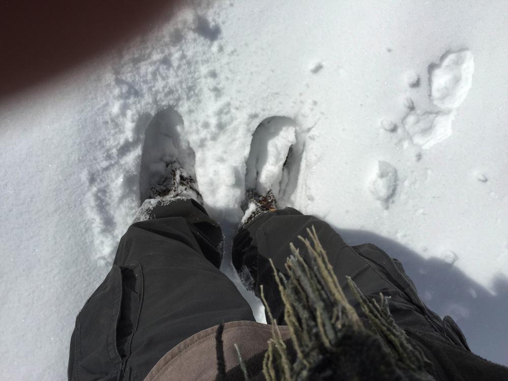 site-5-9-15Big Snow 19.jpg