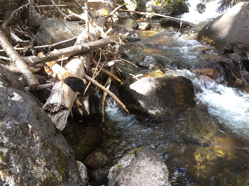 site-9-18-15 N Crestone Trail-8.jpg