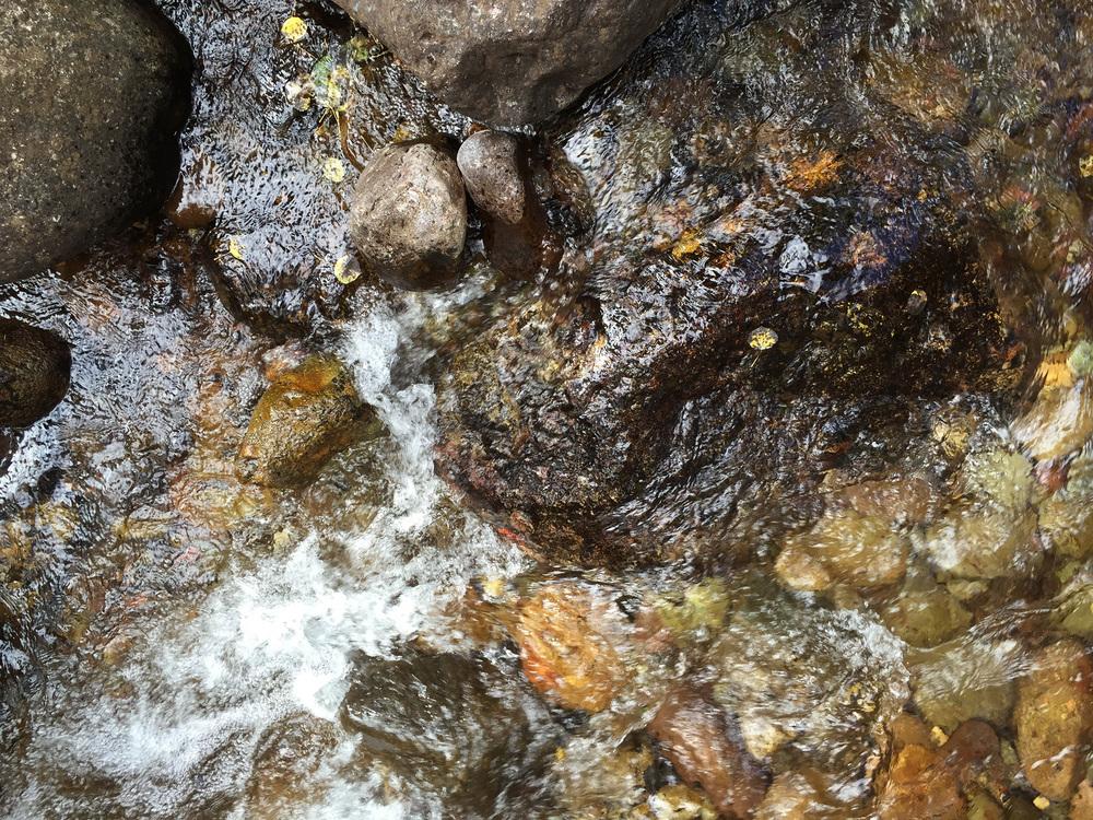 site-9-18-15 N Crestone Trail-7.jpg