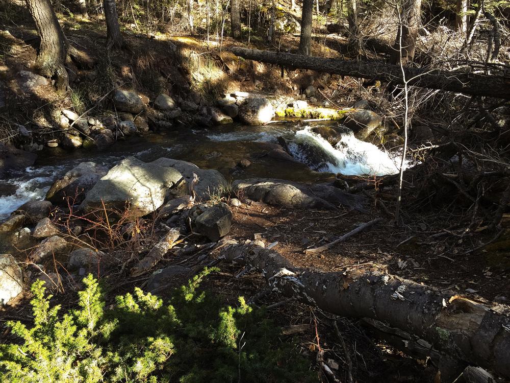5-12-16 spring runoff 2.jpg