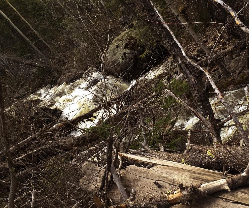 site-5-22-16 creek.jpg