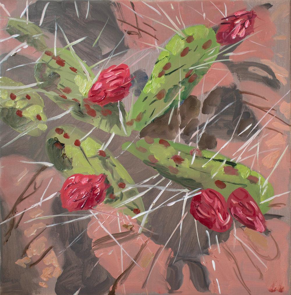 SITE-5=10-17 cacti stage 3.jpg