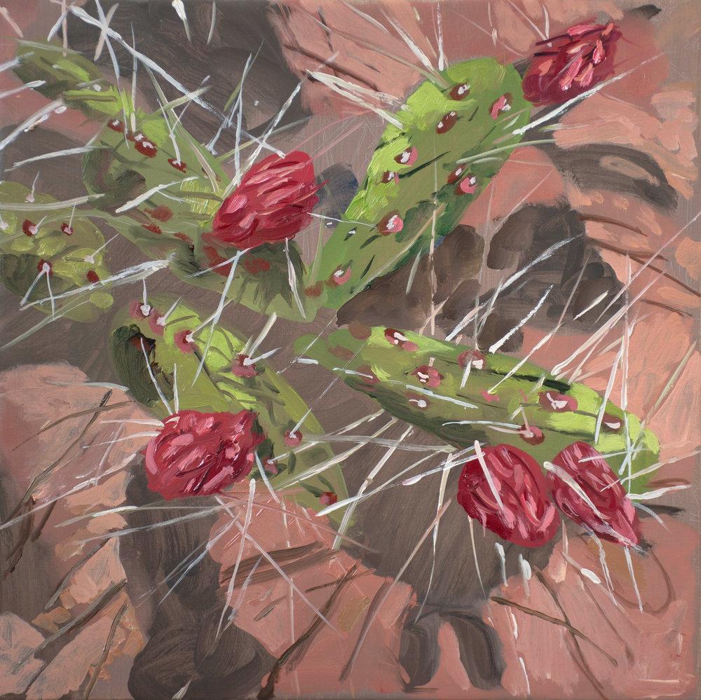 SITE-5-11-17 cactus blossoms.jpg