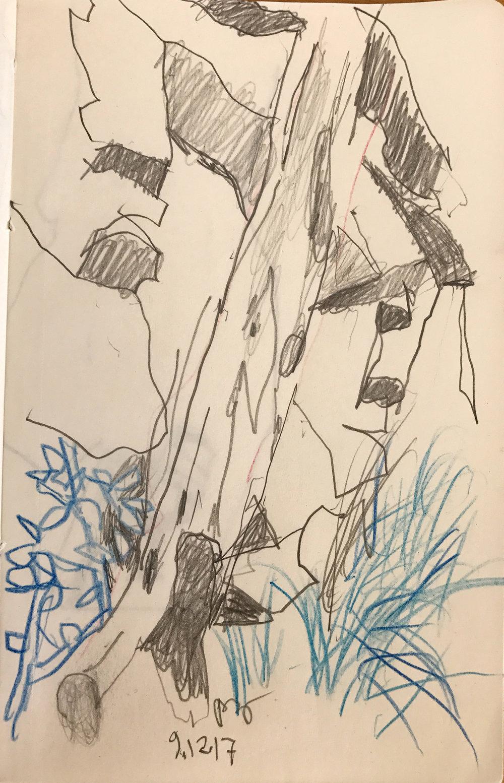 SITE-9-12-17 trail drawing.jpg