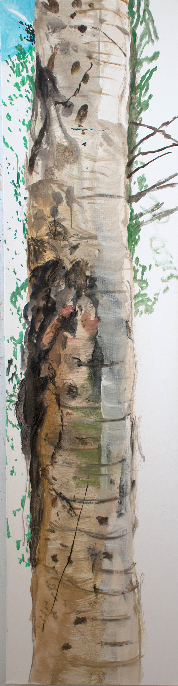 SITE-10-28-17 Tree 2 stage 4.jpg