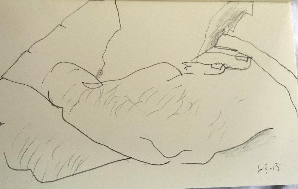 6/3/15 drawing