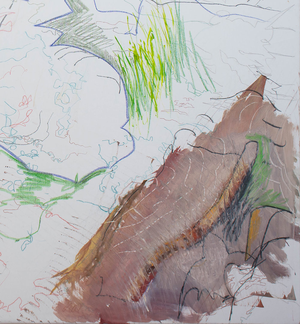 SITE-12-10-17 Landscape Series 2  2-30pm CROP 2.jpg