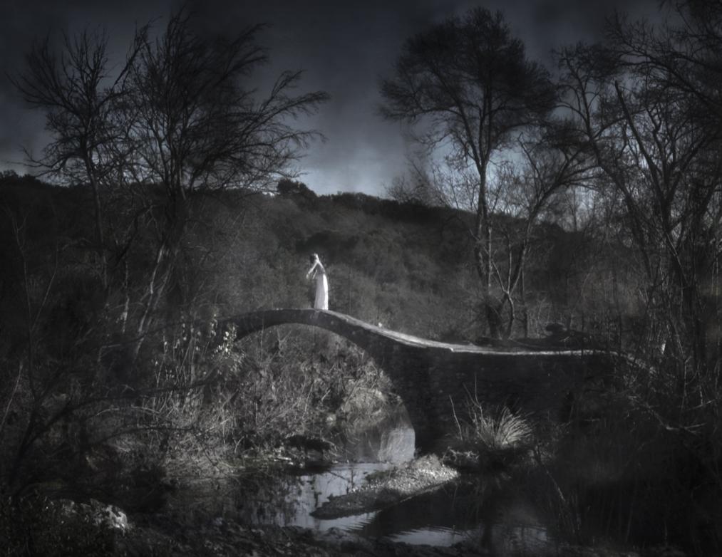 """Le front héliotrope   """"par les dents elle se retenait aux herbes à gué de l'année-lumière  et touchant parfois le sol elle tendait le cou au-delà de son ombre""""    Florian Gerbaud , January 4, 2012   via  bats and swallows ]"""