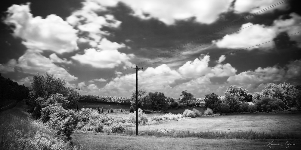 Infrared Homestead