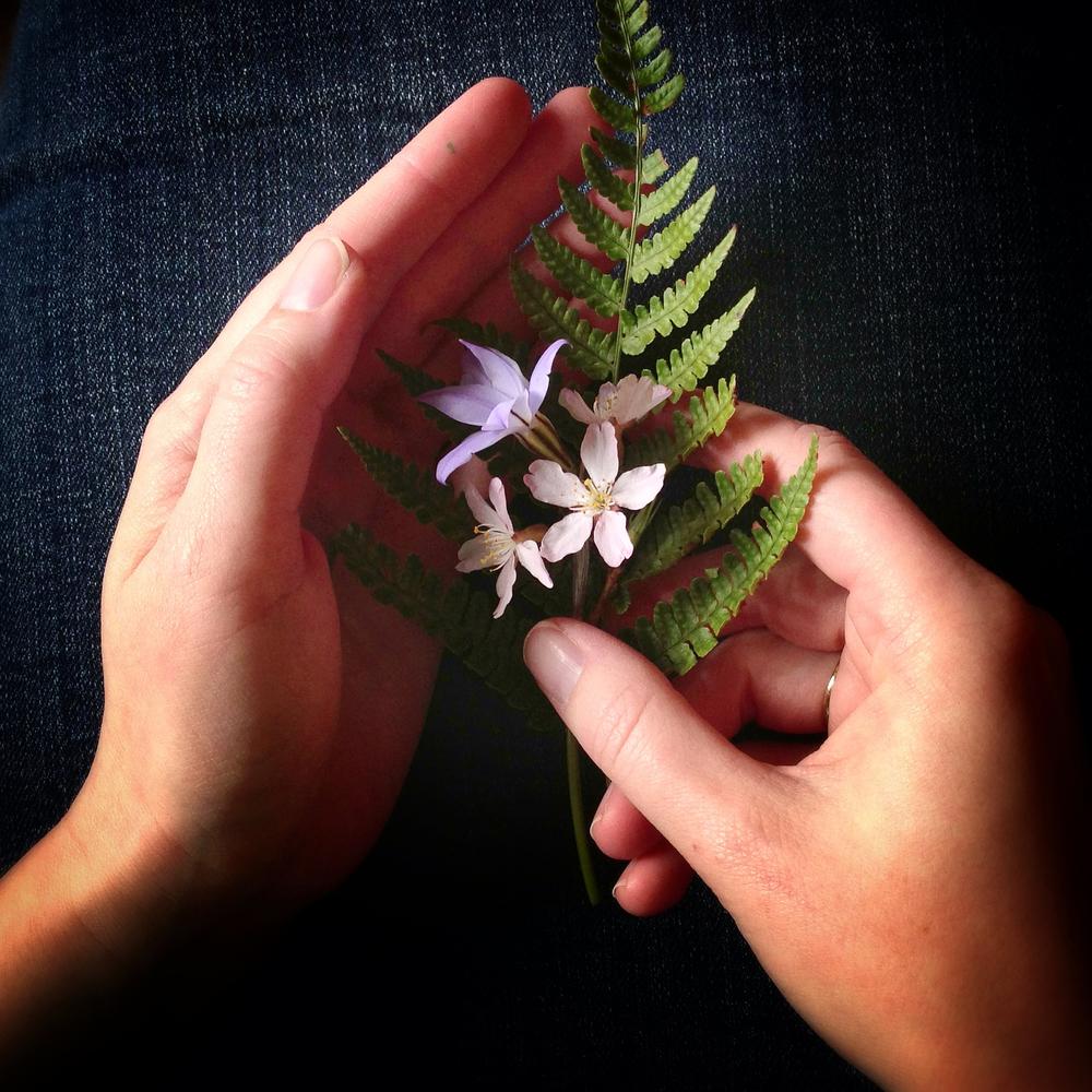 Handsful of Spring