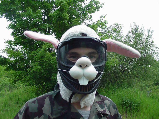 paintball bunny
