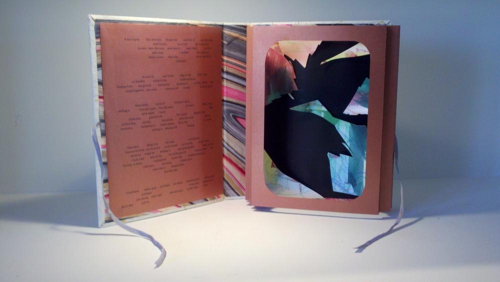 Sandhill Cranes Book