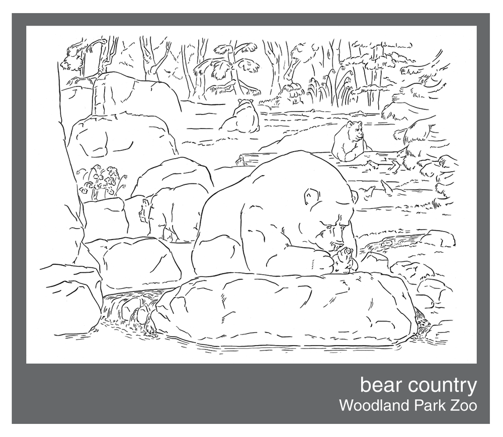 bear-country.png