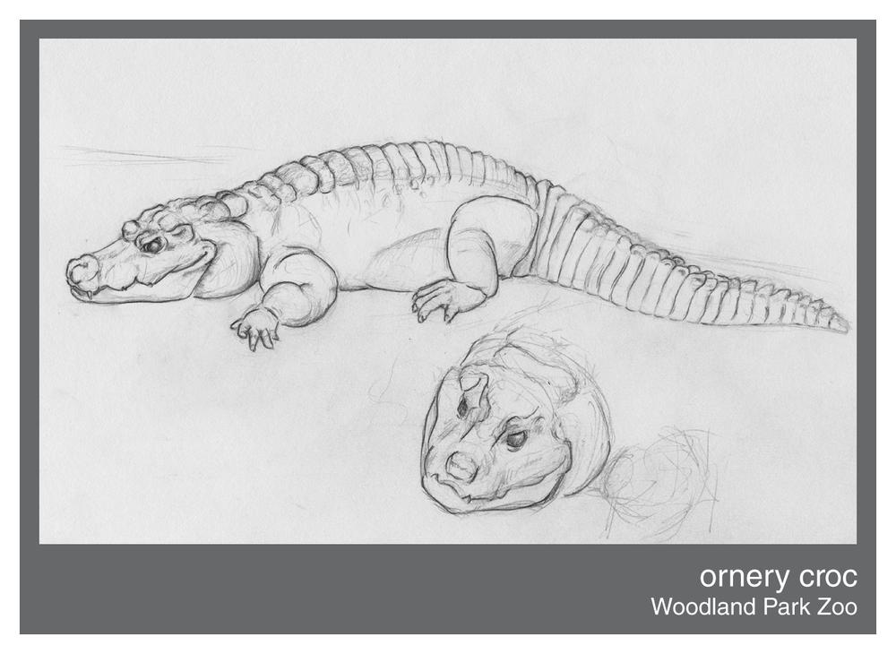 ornery-croc.png