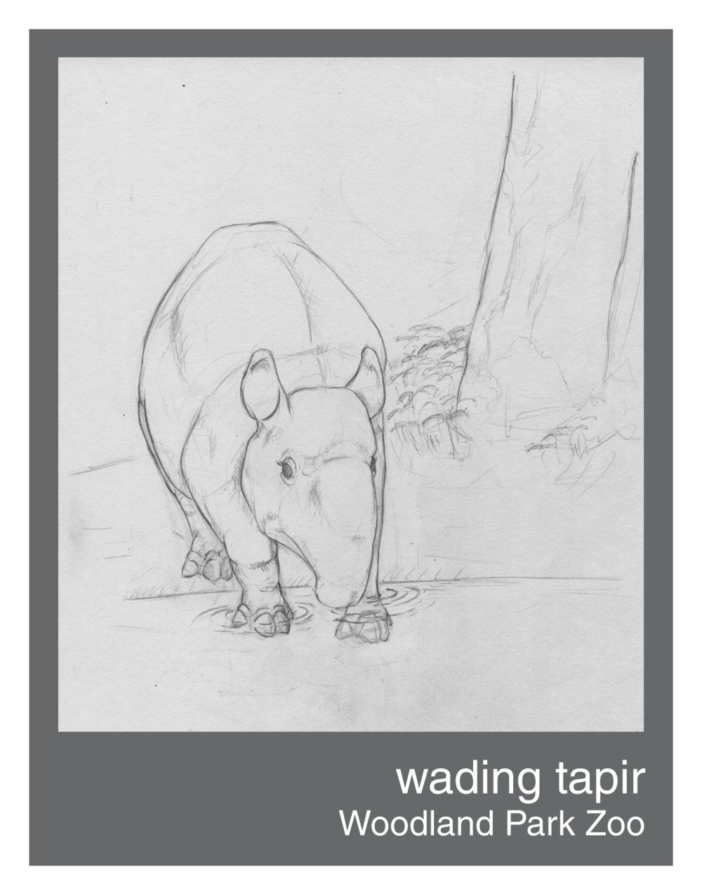 wading_tapir--150ppi.png