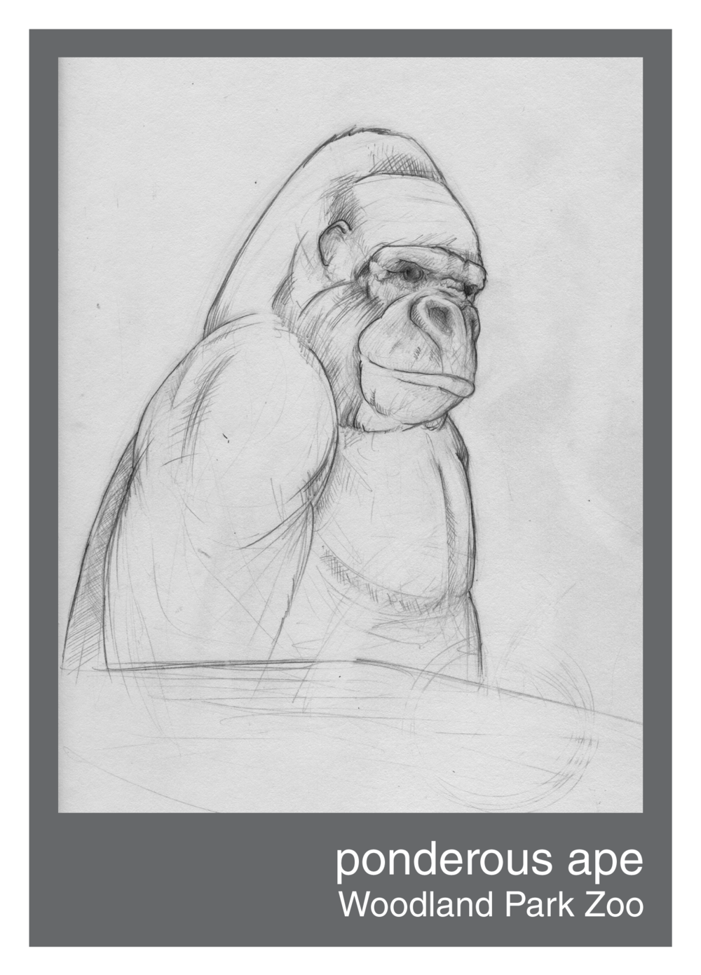 ponderous_ape--150ppi.png