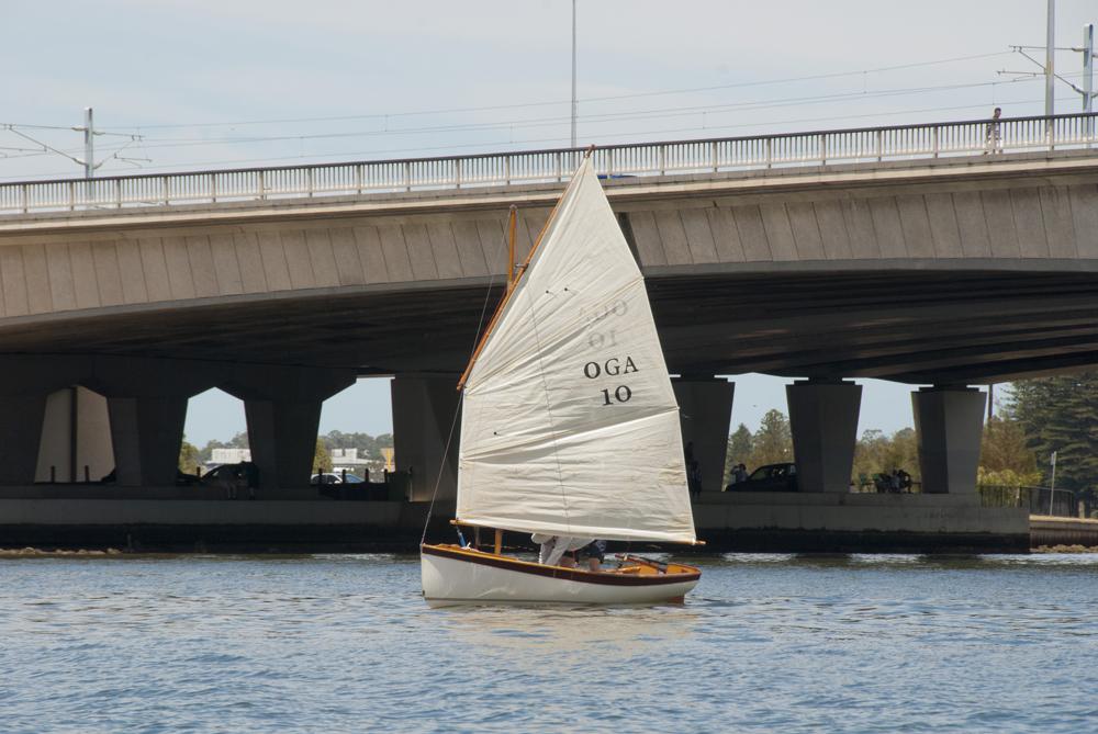 Swan 033.jpg