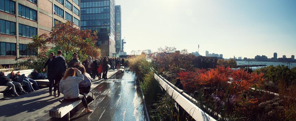 NYC_2013-10.jpg