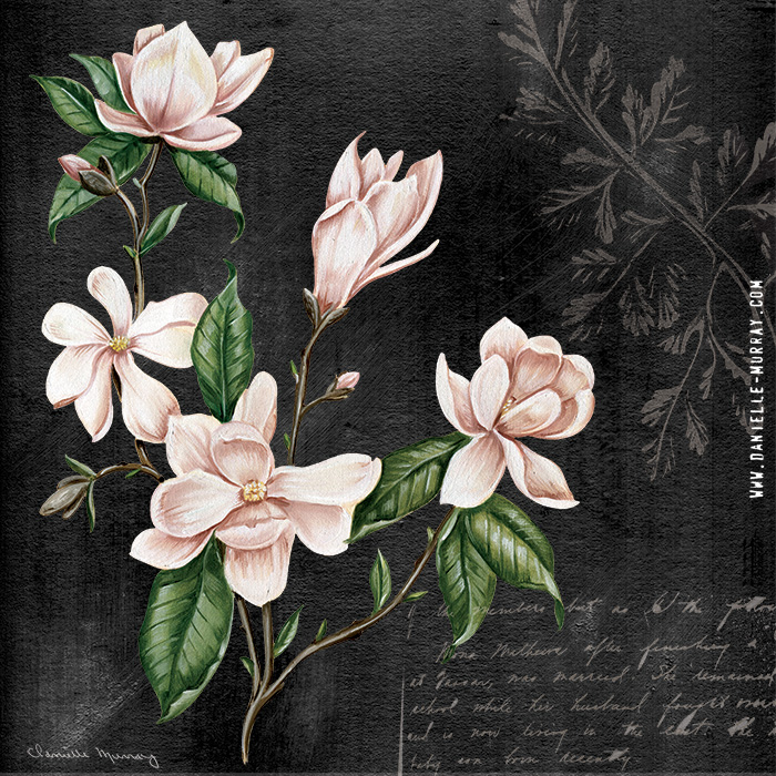Danielle Murray, Midnight Magnolia Collection, Magnolia Bunch
