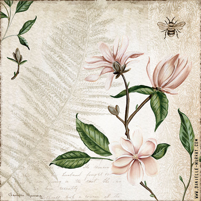 Danielle Murray, Magnolia Botanical Collection, Magnolia Bunch 2