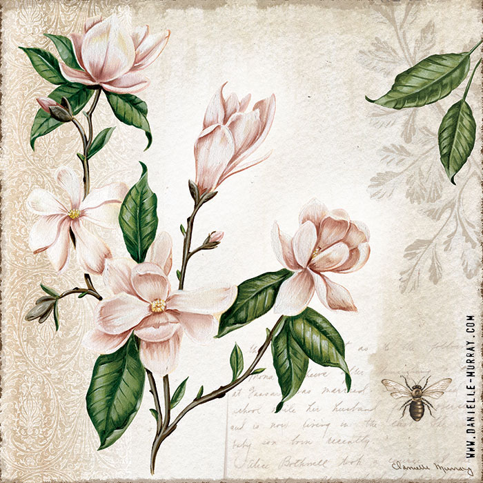 Danielle Murray, Magnolia Botanical Collection, Magnolia Bunch 1