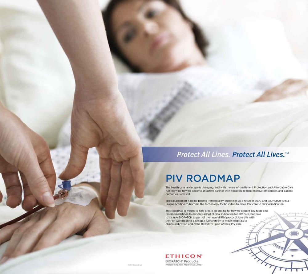 PIV Roadmap 2_Page_1.jpg