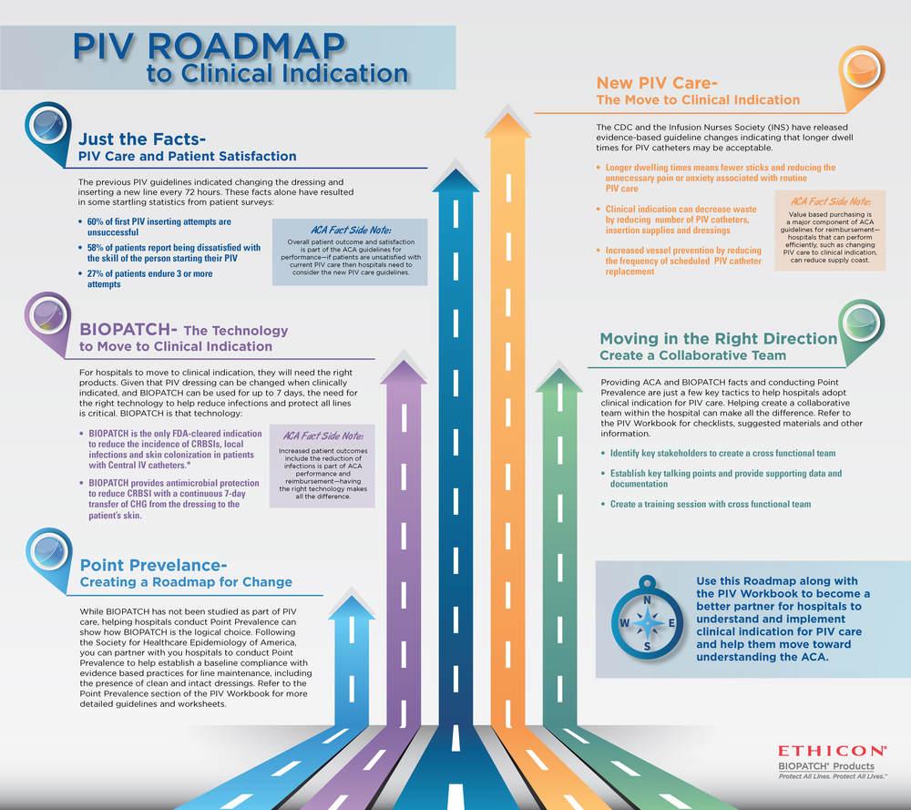 PIV Roadmap 2_Page_2.jpg