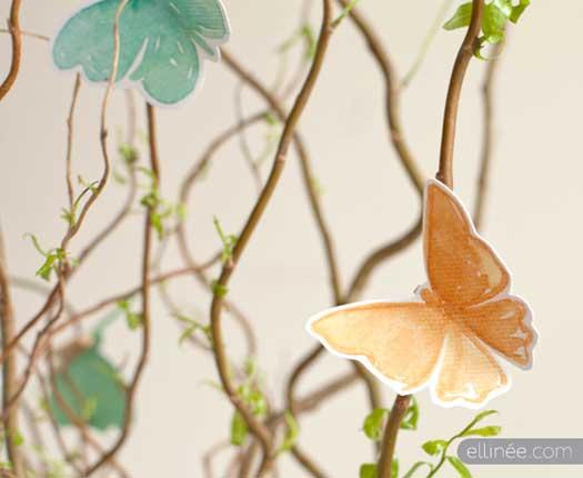 elinee-butterfly.jpg