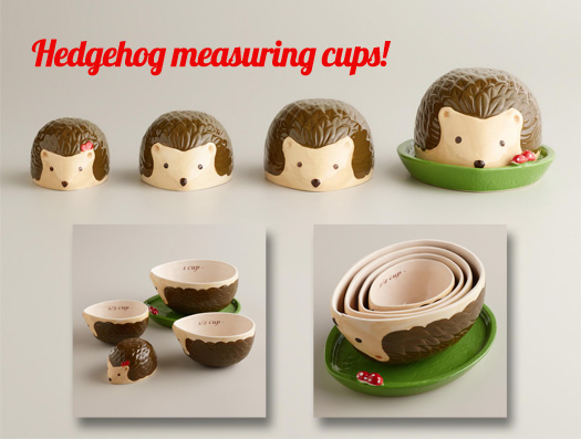 hedgehog-measure.jpg