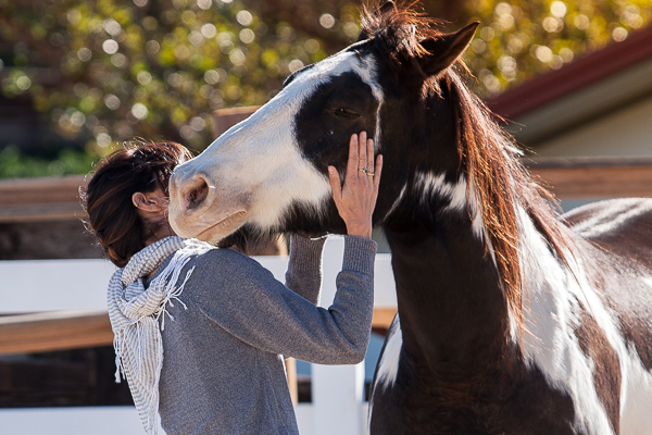 Equine Guided Empowerment