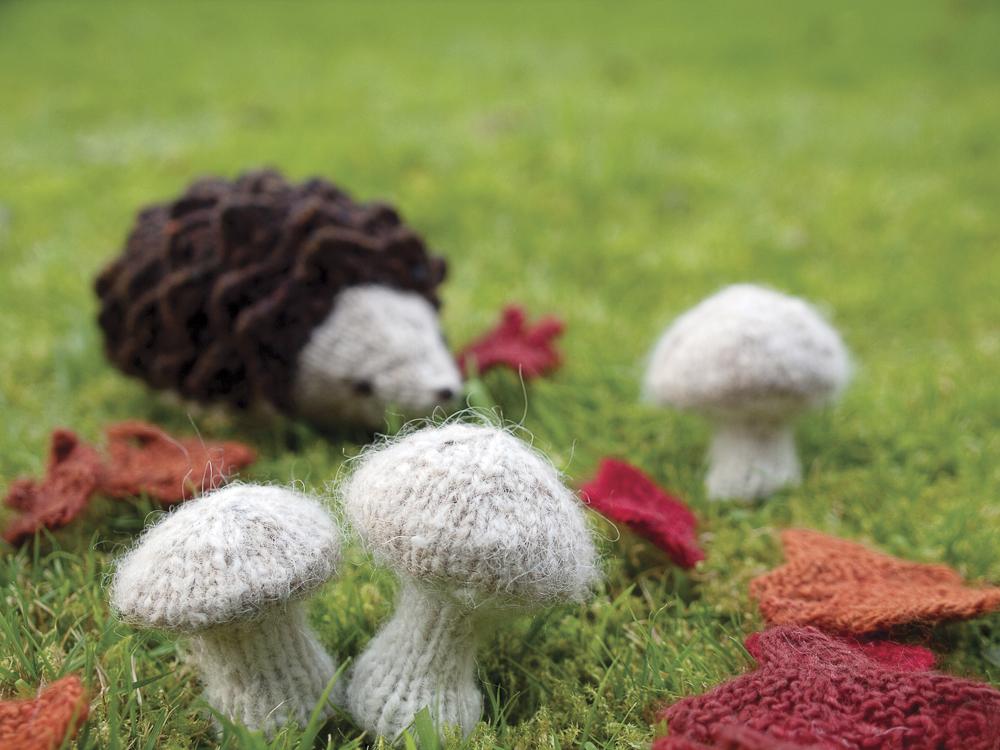 wee mushrooms-1.jpg