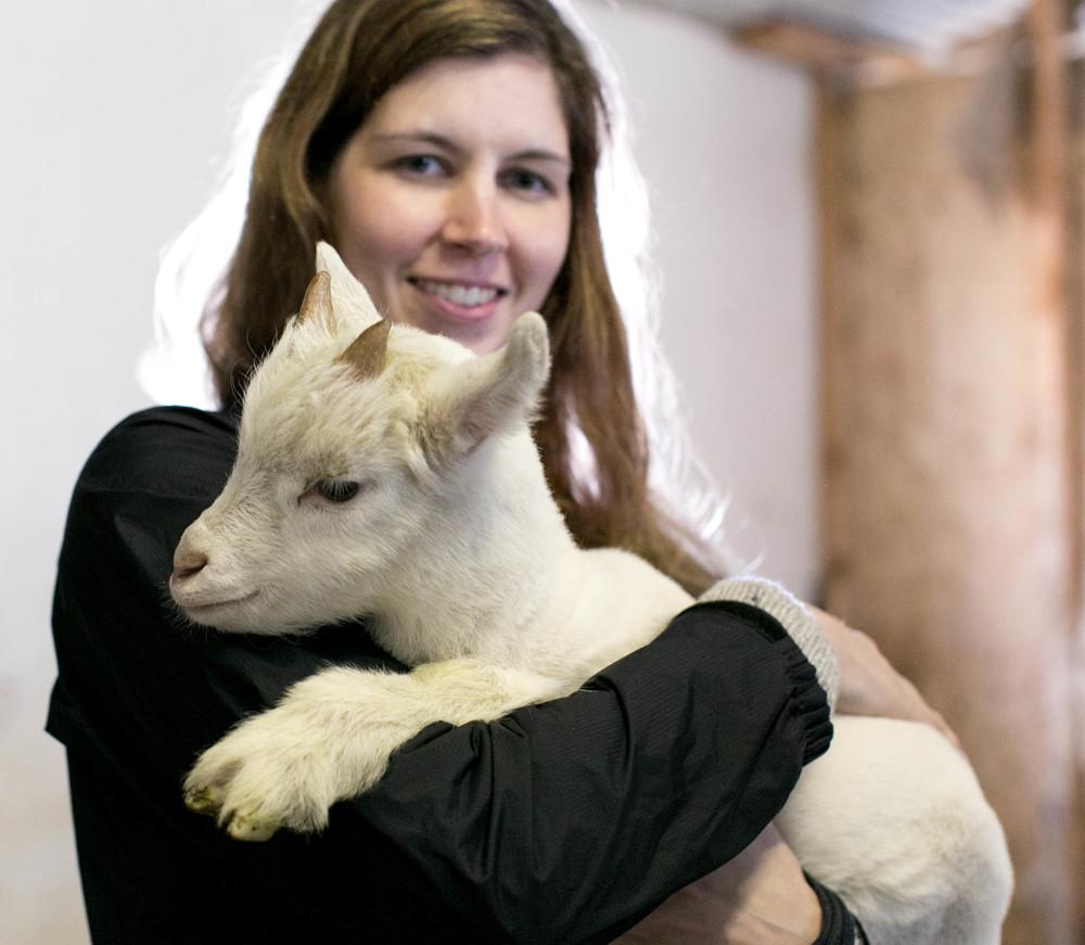 goat farm-2.jpg