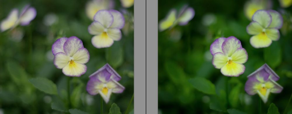 Adobe Lightroom Presets46.jpg