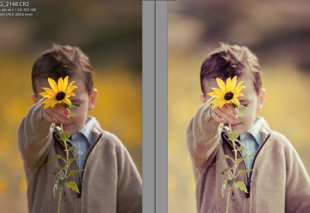 Adobe Lightroom Presets72.jpg