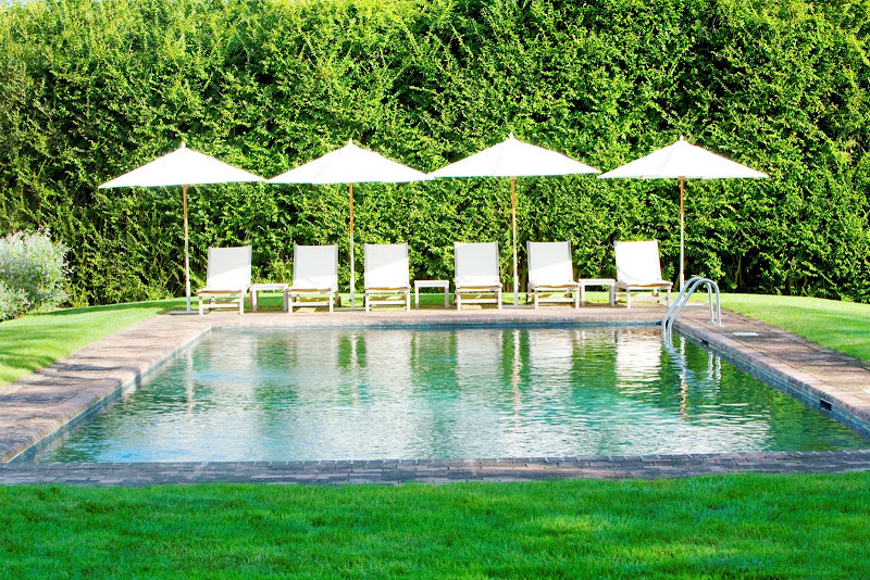 at-home-arkansas-pool-time-market-umbrellas-swimming-grass-lawn-lounge-chairs-outdoor-living-cococozy-hedge-yard.jpg