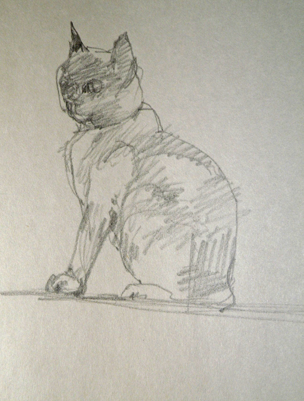 catgraphitesketch18-12.jpg