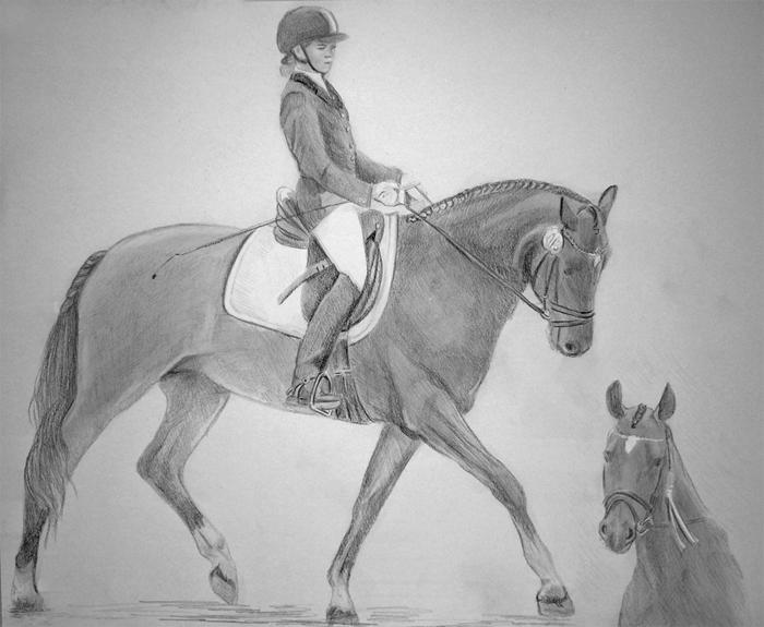 Zeichnung_Pferdezeichnungen_Pferdeportraits_nach__Fotovorlage.jpg