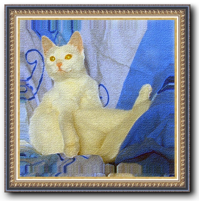 White_cat_on_blue_portrait_b.jpg