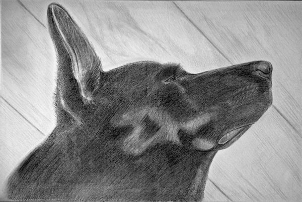 Zeichnung_60x90_1_1.jpg