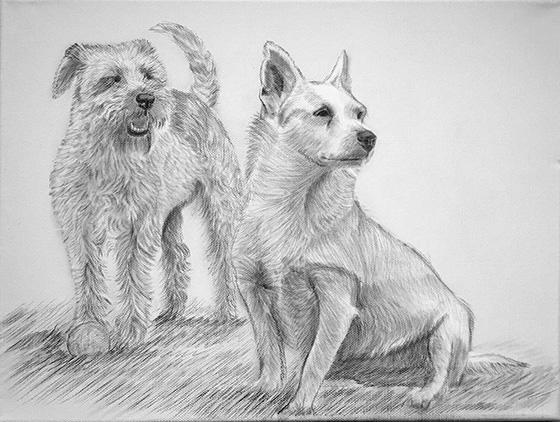 Zeichnung_d_1.jpg