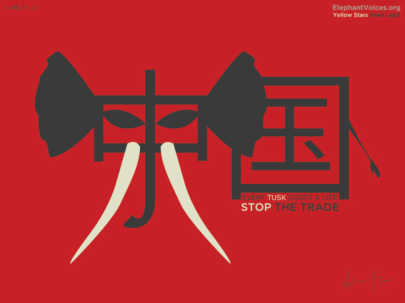 Asher Jay, Stop The Trade, Elephant Voices.org