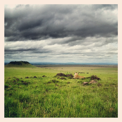 Tanzania Border, Maasai Mara, Kenya