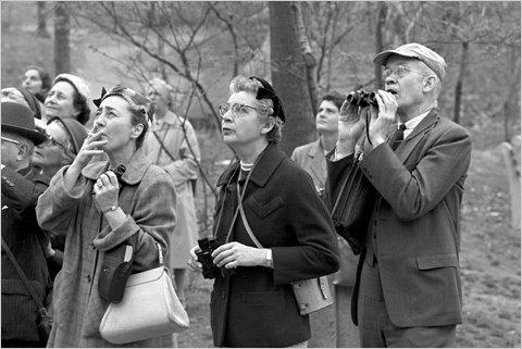 1958CentralPark.jpg