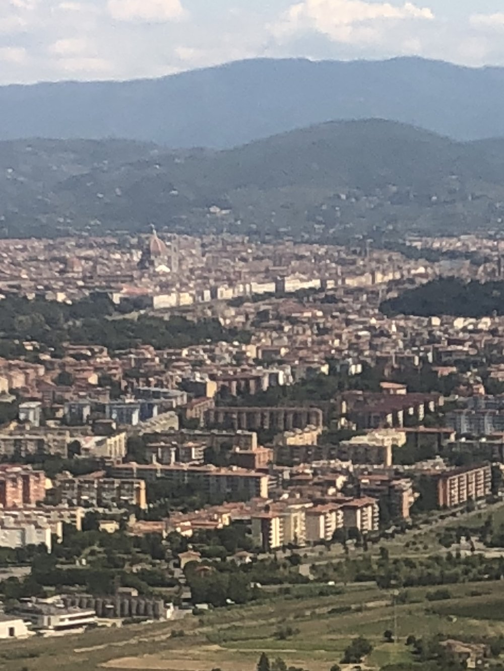 View of Florence from the plane.
