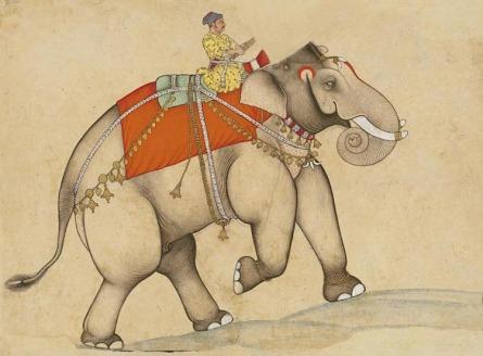 ElephantRider.jpg