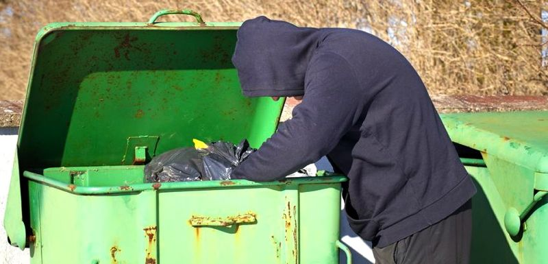 dumpster dive.jpg