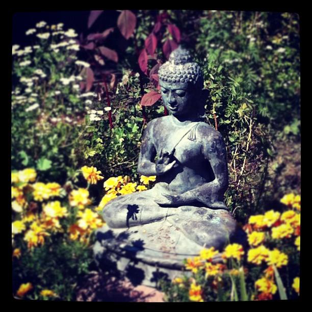 gardenbuddha.jpeg