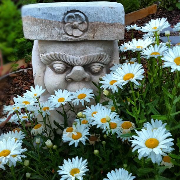 gardenmagic.jpg